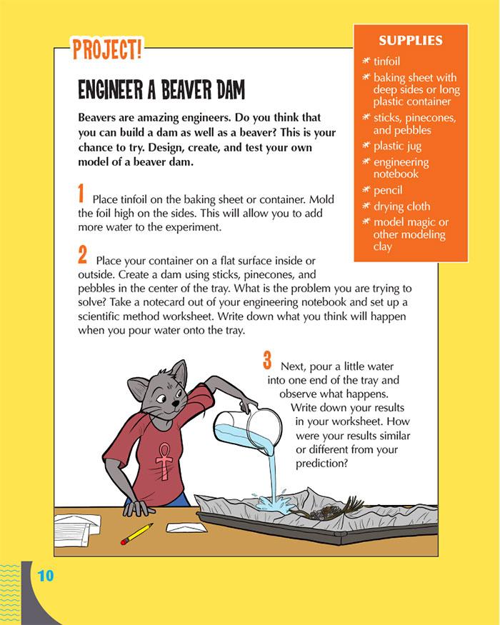 Engineer a Beaver Dam