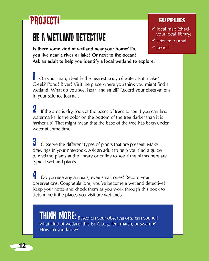 Be a Wetland Detective
