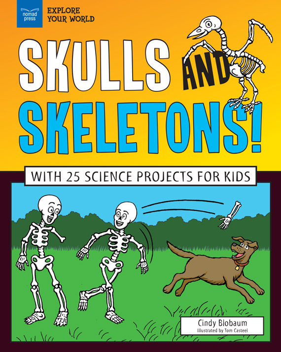 Skulls and Skeletons!