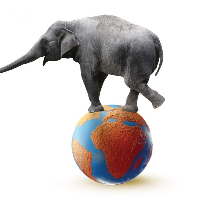 Grey Elephant balancing on a giant ball that looks like Planet Earth