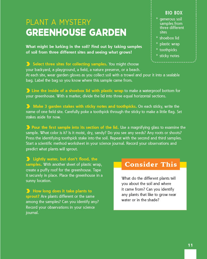 Plant a Mystery Greenhouse Garden