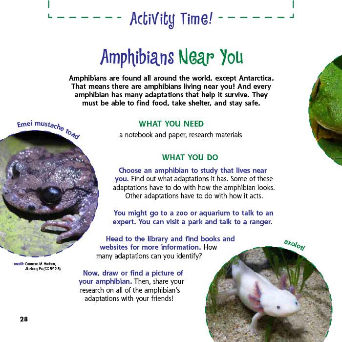 Amphibians Near You
