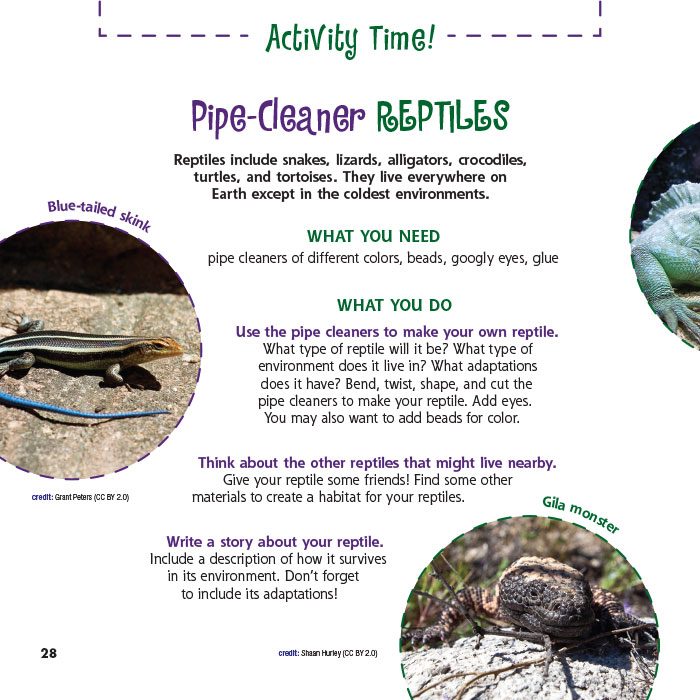 Pipe-Cleaner Reptiles